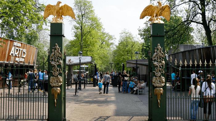 Gietvloer voor Artis dierentuin
